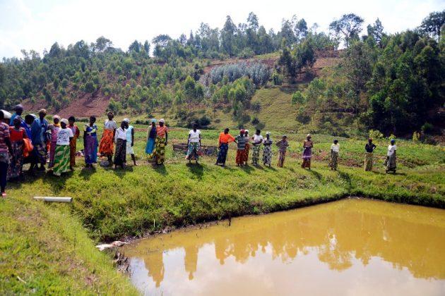 Frauenkooperative Amahoro